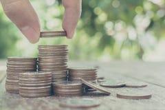 Räcka att sätta myntbunten med suddig bakgrund och göra grön bladet, Royaltyfri Foto