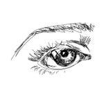 Räcka attraktion det scetchy stora ögat med krönet på den vita bakgrunden Fotografering för Bildbyråer