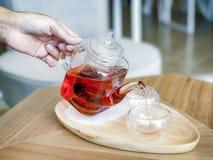 Räcka den hållande tekannan och häll varmt te in i kopp te arkivbilder