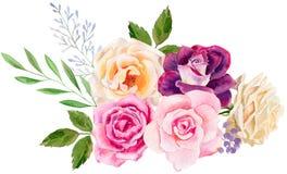 Räcka den målade mallen för vattenfärgmodellclipart av rosor arkivfoton