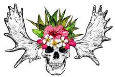 Räcka den utdragna skallen med hjorthorn och blommor vektor royaltyfri illustrationer