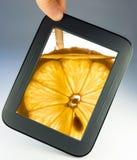 Tablethandlag vadderar datoren med citronen Royaltyfri Fotografi