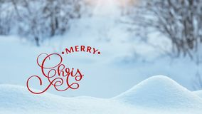 Räcka handstil vit för animeringkalligrafi för glad jul text för bokstäver på naturbakgrund för vintern snowly för video vektor illustrationer