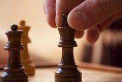 Leka schack royaltyfri bild