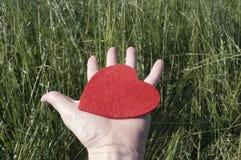 Räcka med hjärta Arkivfoton