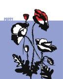 Räcka röda och svarta vallmo för attraktion med text Stock Illustrationer