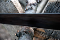 Räcka-såga bita trä arkivbild