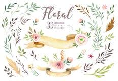 Räcka teckningen isolerade bohovattenfärgen den blom- illustrationen med sidor, filialer, blommor Bohemisk grönskakonst in royaltyfri illustrationer