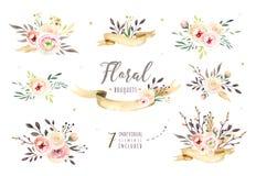 Räcka teckningen isolerade bohovattenfärgen den blom- illustrationen med sidor, filialer, blommor Bohemisk grönskakonst in stock illustrationer