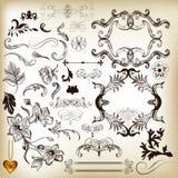 Räcka utdragna calligraphic designbeståndsdelar och sidagarneringar Arkivbild