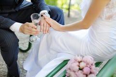Bruden och brudgummen med ringer Arkivfoto
