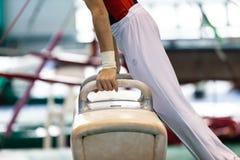 Räcker den manliga kroppen för gymnasthästen närbild royaltyfri bild