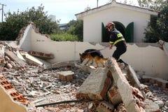 Räddare med hunden, under en utbildningsövning Arkivfoton