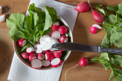 Rädisa med ny örter och gräddfil Vitaminsallad med parsl Arkivbild