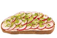 Rädisa på bröd Royaltyfri Bild