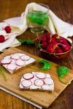 Rädisor med bröd och gräddost Royaltyfria Foton