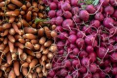 Rädisor och morötter i en New York City bondemarknad royaltyfria bilder
