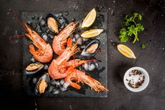 Räka och musslor på is Fotografering för Bildbyråer