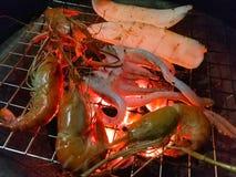 Räka och tioarmade bläckfisken har brännskadan royaltyfri fotografi