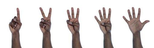 räkna den flåde mörka handen Arkivfoton
