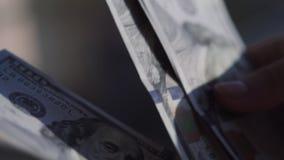 Räkna USA-valuta Personen räknar pengar Nya dollar i hand långsam rörelse lager videofilmer