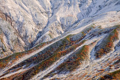 räknad bergsnowyttersida Arkivbilder