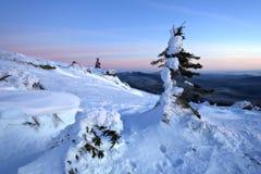räknad vinter för snöig trees för liggandesnow ural Royaltyfri Bild