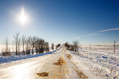 räknade fryste trees för gata för snow för lampnigthväg övervintrar Arkivbilder