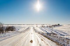 räknade fryste trees för gata för snow för lampnigthväg övervintrar Royaltyfri Foto