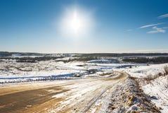 räknade fryste trees för gata för snow för lampnigthväg övervintrar Arkivfoto