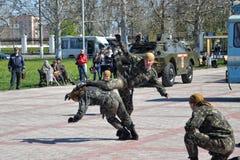 Räknare-terrorist show Royaltyfri Foto