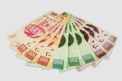 Räkningar för mexicansk Peso Arkivfoto