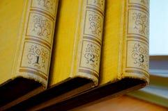 Räkningen av gamla böcker i tre delar fotografering för bildbyråer