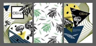 Räkningsmallen av broschyren om olivolja Bakgrund för räkningar, reklamblad, baner och affischer tecknad hand stock illustrationer
