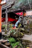 Räv som rymmer en bambu som levererar vatten royaltyfria bilder