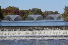 Rävflod Arkivfoto