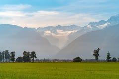Rävglaciär med fältet för grönt exponeringsglas, Nya Zeeland royaltyfria foton