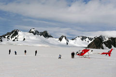 Rävglaciär - Nya Zeeland arkivfoto