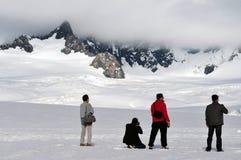 Rävglaciär - Nya Zeeland Arkivbild