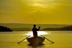 Rävtango på kanalen för uddetorsk Arkivfoto