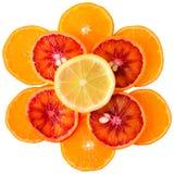 Rżnięta cytryna, krwionośna pomarańcze i mandarynka odizolowywająca, zdjęcia royalty free