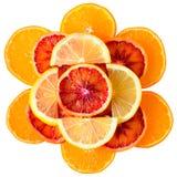 Rżnięta cytryna, krwionośna pomarańcze i mandarynka odizolowywająca, obrazy stock