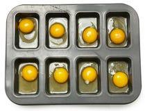 Rå ägg i muffin Tim Ready som ska bakas Arkivfoto