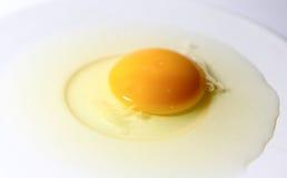 Rå ägg på den vita plattan Royaltyfri Bild