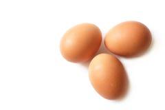 Rå ägg på vit bakgrund Arkivbilder
