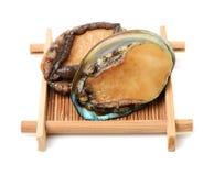 rå abalone royaltyfria bilder