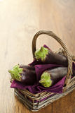 Rå aubergines Royaltyfria Foton