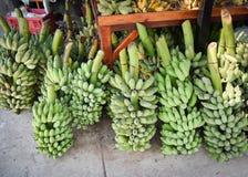 rå bananer Royaltyfri Fotografi