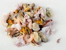 Rå blandad skaldjur Fotografering för Bildbyråer