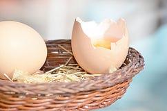 Rå bruna ägg arkivfoto